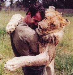 Kevin Richardson, Lion whisperer.