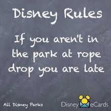 Disney Rules: If you aren't in the park at rope drop you are late!