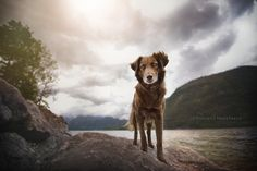 Photo wide-angle portrait by Anne Geier on 500px
