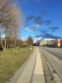 Spring Denmark Roskilde