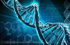 Австралийские ученые доказали существование новой структуры ДНК, которая никогда ранее не наблюдалась в живых клетках, сообщает 316NEWS со ссылкой на prochurch.info. Обычно ДНК описывается как «двойная спираль», но новую структуру сравнивают со «скрученным узлом», пишет Science Alert. «Когда большинство из нас думает о ДНК, мы думаем о двойной спирали. Это новое исследование напоминает нам о …