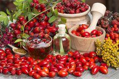 Wildrosenöl - eine Wohltat für die Haut
