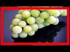 Para Que Son Buenas Las Uvas Verdes - Cuantas Calorias Tienen Las Uvas Verdes - YouTube