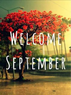 Welcome September Images Welcome September Be Sweet Images Welcome September Images Quotes Welcome September Love Images Welcome September Images, September Quotes, September Pictures, Beach Images, Love Images, New Month Wishes, New Month Quotes, September Wallpaper, Snoopy Images
