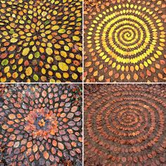 James Brunt creates elaborate ephemeral artworks using the natural materials he finds in forests, parks, and beaches near his home in Yorkshire, England. This form of land art, popularized and often associated with fellow Brit Andy Goldsworthy, involves detailed patterns, textures, and shapes formed