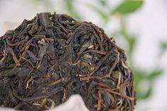 It's not everyday you see a Dan Zhu Gu Shu (single tree ancient tree) Sheng Pu'er that features a picture of the actual tree! Check out the link in the profile to see the tree.