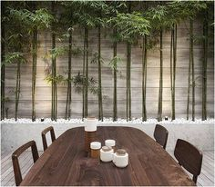 Blinde schutting met lichtaccenten en bamboe. Kan niet wachten tot het lente is en ik de tuin onderhanden kan nemen.