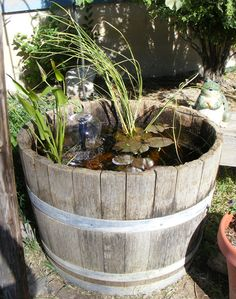 Another addiction. Water container ponds, show me yours please. - Page 2 Container Pond, Water Containers, Container Gardening, Water Plants, Ponds, Waterfalls, Terrarium, Lawn, Addiction