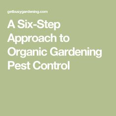 A Six-Step Approach to Organic Gardening Pest Control