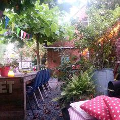 gezellige tuin - lichtsnoer tegen muur -  platanen - planten in potten