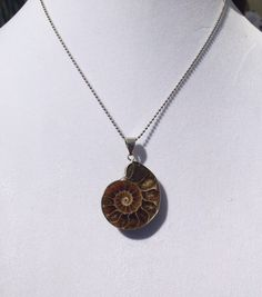 A personal favorite from my Etsy shop https://www.etsy.com/listing/235509626/amonite-fossil-pendant-necklace