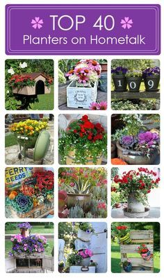 Top 40 planter ideas on Hometalk! Curated by the wonderful Barb Peterson Peterson Rosen Garden Junk, Lawn And Garden, Garden Planters, Diy Planters, Unique Gardens, Amazing Gardens, Garden Crafts, Garden Projects, Container Plants