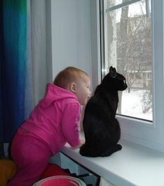 Little girl and her cat Looking Out The Window, Cats And Kittens, Kitty Cats, Beautiful Children, Little Girls, Dog Cat, Windows, Dogs, Waiting
