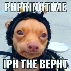 Phteven phpringtime iph the bepht