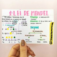 Mental Map, Leis, Study Techniques, Med Student, Lettering Tutorial, Study Hard, Studyblr, Study Notes, Study Motivation