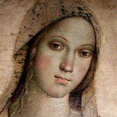 "Pinturicchio "" Madonna """