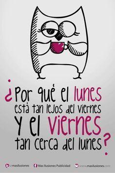 1000+ images about Spanish Memes on Pinterest   Chistes, Spanish ...