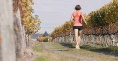 Hawkes Bay Marathon 2016