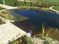 best backyard swimming pools