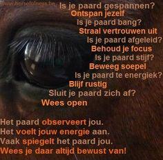 Horsemanship, Rechtrichten en Bitloos Paardrijden: Paarden trainen via het Horsefulness-trainingssysteem