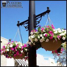21in. Fiberglass Hanging Basket, includes chain & swivel hook - 20 colors to choose from! Two hanging baskets on a light post. http://www.hooksandlattice.com/fiberglass-flower-basket.html