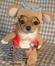 Courage doesn't always roar...