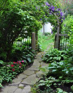Three Dogs in a Garden: Ideas