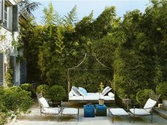 Bamboo lined courtyard w/ iron daybed; Isabel Lopez-Quesada