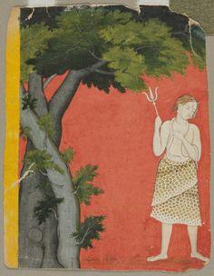 Shiva Under Trees, c. 1780- India, Pahari, Kangra school, 18th century, color on paper, Overall: 18.20 x 14.00 cm (7 1/8 x 5 1/2 inches). Mr. and Mrs. William H. Marlatt Fund 1960.48