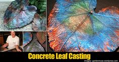 Concrete leaf casting is a great way to create your own piece of art with relatively little effort and cost. Most leaves that are created are not reinforced with chicken wire as they are smaller. Related Reading: Make A Cool Looking Large Leaf Birdbath – DIY Project The types of leaves that are used are …