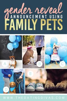 Gender-Reveal-Announcement-Using-Family-Pets