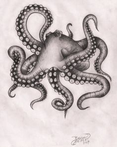 octopus ROUND TWO by beccaface