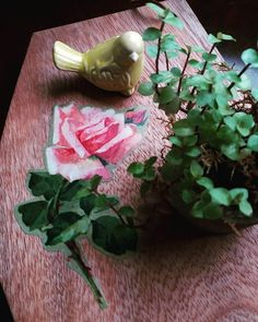 WEBSTA @ sapatiko - decalques urbanos na minha tábua de servir 🌹 #decalque #vintage #decalquesurbanos #lambelambe #decoraçãoétododia #home #amocaseirices #flor #verdepresente #plantlover #plants #concretevase #wood #tabuadeservir #handmadewithlove #feitoamao #handmade