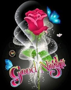 Good Night Funny, New Good Night Images, Good Night Love Messages, Good Morning Beautiful Pictures, Good Night Friends, Good Night Greetings, Good Night Gif, Good Night Wishes, Good Night Sweet Dreams