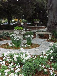 Stylizing Attractive French Gardening Design: Astonishing Planter In The Middle Of Rounded Pathway In Sophisticated Carving Design Decorated With White Flowers