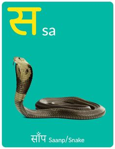 Hindi Alphabet eBook for Kids - Letter स - Ira Parenting Free Preschool, Preschool Worksheets, Hindi Alphabet, Hindi Worksheets, Learn Hindi, Hindi Words, Letters For Kids, Vocabulary, Activities For Kids
