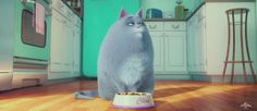Trailer do filme Pets – A vida secreta dos bichos, da Illumination Entertainment