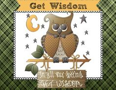 Bible Lesson Task Cards:  Get Wisdom