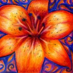 Orange tiger lily grown with Prismacolor pencils and paper instead of water and sunlight.