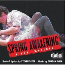 The Duncan Sheik/Steven Sater musical Spring Awakening won the 2008 Grammy Award for Best Musical Show Album on Feb. The other nominees in the category were A Chorus Line, Company, Grey Gardens and West Side Story. Idina Menzel, Theatre Geek, Musical Theatre, Theater, Spring Awakening Broadway, Duncan Sheik, Skylar Astin, Wicked, Verbatim
