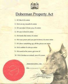 free printable funny doberman property laws More