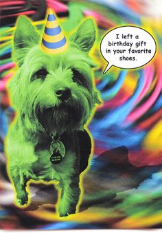 Funny bad dog birthday card is crafted in Popliments' copyrighted psychedelic pop art style. Inspired by a cute animal photo, this greeting card has a color palette of green, yellow, pink and blue.   Front: I left a birthday gift in your favorite shoes. Inside: Just my way of saying how much I care. Dog Birthday, Birthday Cards, Birthday Gifts, Cute Animal Photos, Funny Greeting Cards, Psychedelic, Pop Art, Cute Animals, Yellow
