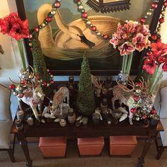 Festive and inviting. @ubloom #americangrown #sharethebounty #joy #comeseeus #mossmountainfarm #cheer #Christmas