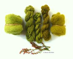 Natural green dye from Sheep Sorrel! OMG so pretty