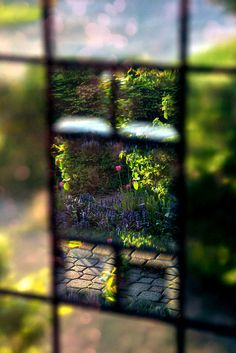 through the window ~ photography by Tonny via Flickr
