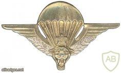 Parachutist wing, officer