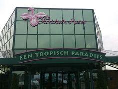 De Orchideeën Hoeve in Luttelgeest, Flevoland
