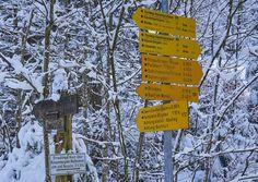 Bildergebnis für schmugglerregion klausenberg fellhorn Berg