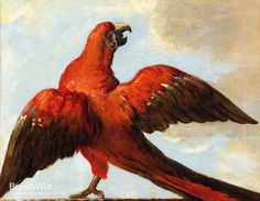 Parrot With Open Wings by Jean-Baptiste Oudry - Oil Painting Reproduction - BrushWiz.com