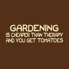 Gardening is cheaper than therapy and you get tomatoes! YES!